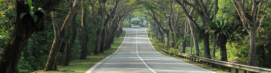 resultados-carreteras-secundarias-detalle1