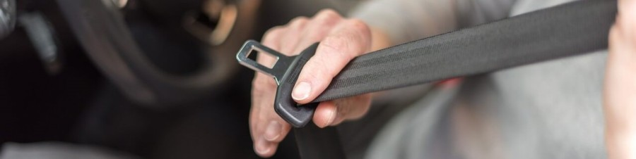 cinturón-de-seguridadwp